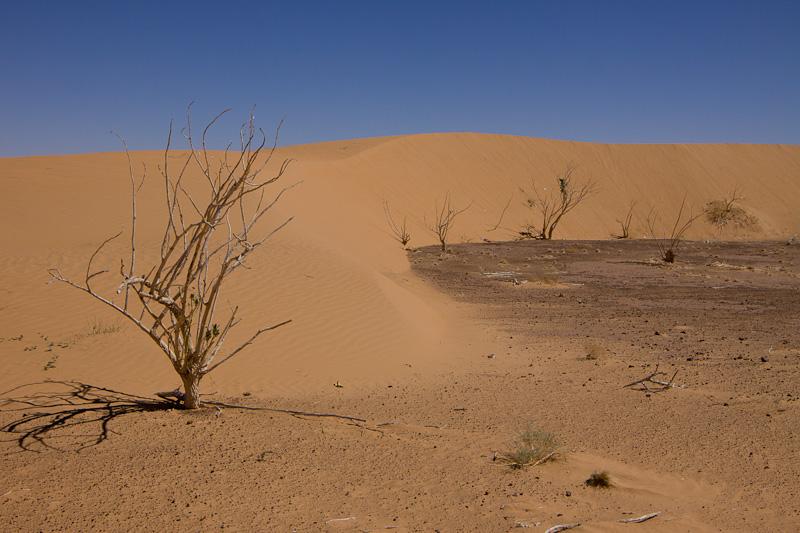 пески Мавритании